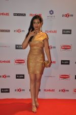 Amrita Rao at Filmfare Nominations bash in Hyatt Regency, Mumbai on 22nd Jan 2015 (172)_54c24184cf97c.JPG