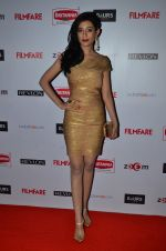 Amrita Rao at Filmfare Nominations bash in Hyatt Regency, Mumbai on 22nd Jan 2015 (347)_54c24190ee9de.JPG