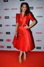 Ankita Shorey at Filmfare Nominations bash in Hyatt Regency, Mumbai on 22nd Jan 2015 (256)_54c241c697afe.JPG