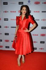 Ankita Shorey at Filmfare Nominations bash in Hyatt Regency, Mumbai on 22nd Jan 2015 (280)_54c241ce9d37a.JPG