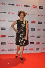 Dia Mirza at Filmfare Nominations bash in Hyatt Regency, Mumbai on 22nd Jan 2015 (99)_54c2423412720.JPG