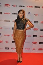 Gauhar Khan at Filmfare Nominations bash in Hyatt Regency, Mumbai on 22nd Jan 2015 (51)_54c24281708b7.JPG