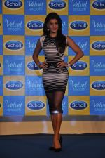 Jacqueline Fernandez at Scholls promotion in Four Seasons, Mumbai on 22nd Jan 2015 (10)_54c209b442595.JPG