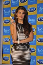 Jacqueline Fernandez at Scholls promotion in Four Seasons, Mumbai on 22nd Jan 2015 (40)_54c209f9cce3d.JPG