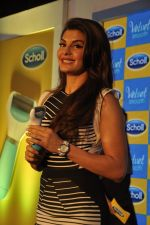 Jacqueline Fernandez at Scholls promotion in Four Seasons, Mumbai on 22nd Jan 2015 (45)_54c20a07de234.JPG