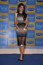 Jacqueline Fernandez at Scholls promotion in Four Seasons, Mumbai on 22nd Jan 2015 (7)_54c209ac228c1.JPG