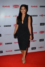 Pallavi Sharda at Filmfare Nominations bash in Hyatt Regency, Mumbai on 22nd Jan 2015 (322)_54c24362d1485.JPG
