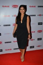 Pallavi Sharda at Filmfare Nominations bash in Hyatt Regency, Mumbai on 22nd Jan 2015 (323)_54c2436434fb0.JPG