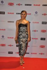 Vaani Kapoor at Filmfare Nominations bash in Hyatt Regency, Mumbai on 22nd Jan 2015 (87)_54c244eb3c7d8.JPG