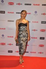 Vaani Kapoor at Filmfare Nominations bash in Hyatt Regency, Mumbai on 22nd Jan 2015 (88)_54c244ee613dc.JPG