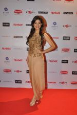 at Filmfare Nominations bash in Hyatt Regency, Mumbai on 22nd Jan 2015 (25)_54c241f3db858.JPG