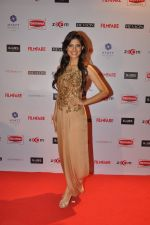 at Filmfare Nominations bash in Hyatt Regency, Mumbai on 22nd Jan 2015 (26)_54c241f749609.JPG