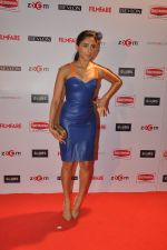 at Filmfare Nominations bash in Hyatt Regency, Mumbai on 22nd Jan 2015 (62)_54c24224bb1ec.JPG