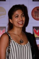 Parvathy Omanakuttan at the Brew Fest in Mumbai on 23rd Jan 2015 (99)_54c4b80847084.jpg