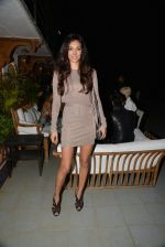Preeti Desai at Belvedare bash in Mumbai on 23rd Jan 2015 (14)_54c4b767e6be7.JPG