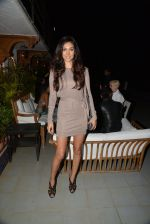 Preeti Desai at Belvedare bash in Mumbai on 23rd Jan 2015 (16)_54c4b76cdb2e7.JPG