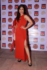 Shibani Kashyap at the Brew Fest in Mumbai on 23rd Jan 2015 (27)_54c4b86248b0d.jpg