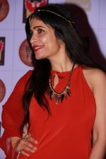 Shibani Kashyap at the Brew Fest in Mumbai on 23rd Jan 2015 (30)_54c4b86620a3c.jpg