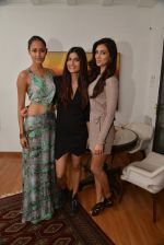 at Belvedare bash in Mumbai on 23rd Jan 2015 (30)_54c4b789e45fa.JPG