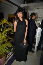 at Belvedare bash in Mumbai on 23rd Jan 2015 (37)_54c4b7991a463.JPG