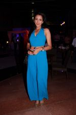 at the Brew Fest in Mumbai on 23rd Jan 2015 (114)_54c4b7d0958d8.jpg