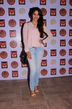 at the Brew Fest in Mumbai on 23rd Jan 2015 (88)_54c4b7bcc9bad.jpg