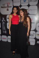 Pria Kataria Puri at Top Gear Awards in Mumbai on 28th Jan 2015 (5)_54c9d0e78ac51.JPG