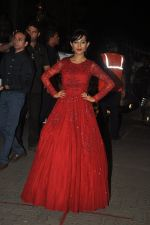 Amrita Rao at Filmfare Awards 2015 Arrival on 31st Jan 2015 (245)_54ce2d2e87980.JPG