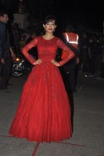 Amrita Rao at Filmfare Awards 2015 Arrival on 31st Jan 2015 (246)_54ce2d34067e0.JPG