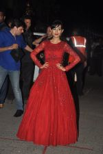 Amrita Rao at Filmfare Awards 2015 Arrival on 31st Jan 2015 (247)_54ce2d3882f90.JPG