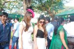 at Signature Derby in Mumbai on 1st Feb 2015 (198)_54cf35fab0346.JPG