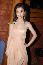 Suzanna Mukherjee at Badmashiyan music launch in Bandra, Mumbai on 4th Feb 2015 (12)_54d328776c504.JPG