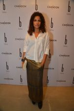 Kamal Sidhu at Behno ethical designer label launch in Colaba, Mumbai on 7th Feb 2015 (33)_54d74972bebe2.JPG