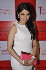 Bhagyashree at the launch of collection Trousseau Treasures designed by Maheka Mirpuri at the Ghanasingh Be True Jewellery Salon, Bandra on 11th Feb 2015 (60)_54dc64331447d.JPG
