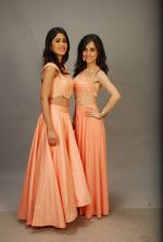 at Photo shoot for VRG motion pictures in Andheri, Mumbai on 12th Feb 2015 (49)_54ddf59110788.JPG