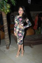 Giaa Manek at Telly Chakkar bash in Heaven_s Dog on 13th Feb 2015 (44)_54e0034f5cd4d.JPG