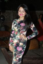 Giaa Manek at Telly Chakkar bash in Heaven_s Dog on 13th Feb 2015 (45)_54e00351ee0aa.JPG