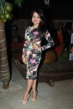 Giaa Manek at Telly Chakkar bash in Heaven_s Dog on 13th Feb 2015 (46)_54e0035354a59.JPG