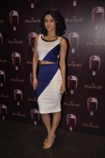 Madhurima Tuli at Magnum icecream event in Mumbai on 22nd Feb 2015 (2)_54eae1f7ebc0b.JPG