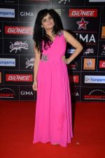 Aditi Singh Sharma at GIMA Awards 2015 in Filmcity on 24th Feb 2015 (379)_54ed7df73b7e6.JPG