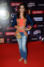 Akriti Kakkar at GIMA Awards 2015 in Filmcity on 24th Feb 2015 (193)_54ed7e024b0d5.JPG