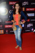 Akriti Kakkar at GIMA Awards 2015 in Filmcity on 24th Feb 2015 (196)_54ed7e066a012.JPG