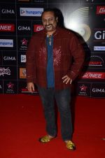 Leslie Lewis at GIMA Awards 2015 in Filmcity on 24th Feb 2015 (356)_54ed86a8a5de3.JPG