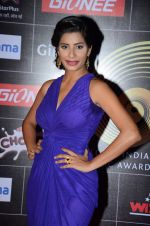 at GIMA Awards 2015 in Filmcity on 24th Feb 2015 (105)_54ed863dd92fb.JPG