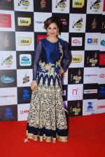 Akriti Kakkar at 7th Mirchi Music Awards in Mumbai on 26th Feb 2015 (270)_54f06ef37341a.JPG