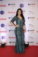Anjana Sukhani at Ciroc Filmfare Galmour and Style Awards in Mumbai on 26th Feb 2015 (223)_54f076949ad50.JPG
