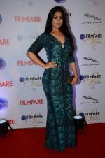 Anjana Sukhani at Ciroc Filmfare Galmour and Style Awards in Mumbai on 26th Feb 2015 (576)_54f07699be38d.JPG