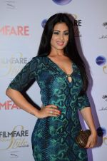 Anjana Sukhani at Ciroc Filmfare Galmour and Style Awards in Mumbai on 26th Feb 2015 (577)_54f0769bed42e.JPG