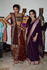 Diandra Soares at Shaina NC preview for Pidilite show in Mumbai on 26th Feb 2015 (12)_54f06a6564fca.JPG
