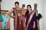 Diandra Soares at Shaina NC preview for Pidilite show in Mumbai on 26th Feb 2015 (13)_54f06a66ad624.JPG